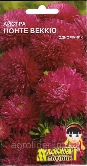 Семена цветов Астра Понте веккио 0.5г (Малахiт Подiлля)