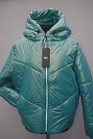 Демисезонная куртка на девушек рукав реглан Зефирка бирюза, фото 1