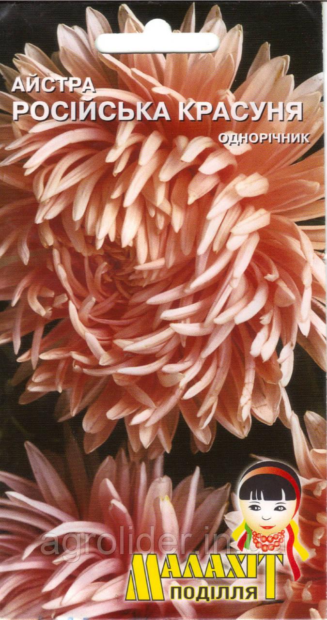 Семена цветов Астра Русская красавица 0.5г (Малахiт Подiлля)