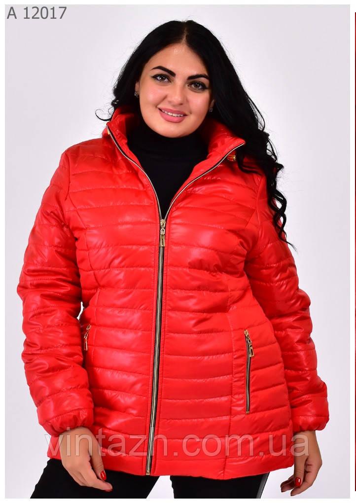 Женские куртки  большие размеры 54-70