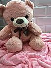 Плед іграшка Ведмедик 3в1, фото 2
