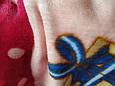 Плед дитячий ведмедик мікрофібра полірований розмір 100*140, фото 2