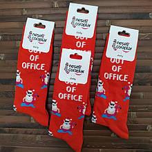 Шкарпетки з приколами демісезонні Neseli Coraplar Daily 5985 Туреччина one size (37-43р) НМД-0510707