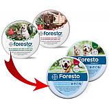 Ошейник от блох и клещей Форесто Foresto Bayer для кошек и собак малых пород 38 см, фото 2