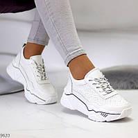 """Женские кожаные кроссовки повседневные Белые """"Walker"""", фото 1"""