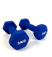 Гантелі металеві з вініловим покриттям 2 шт по 3 кг ля фітнесу (Комплект набір гантелей 6 кг)