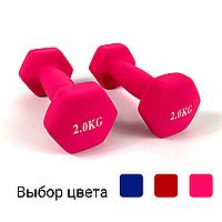 Гантелі металеві з вініловим покриттям 2 шт по 2 кг для фітнесу (Комплект набір гантелей 4 кг) Рожевий, фото 1
