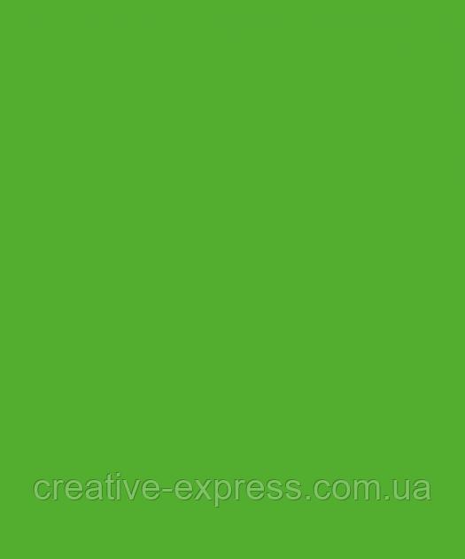 Папір для дизайну Tintedpaper В2 (50*70см), №55 темно-салатовий, 130г/м, без текстури, Folia