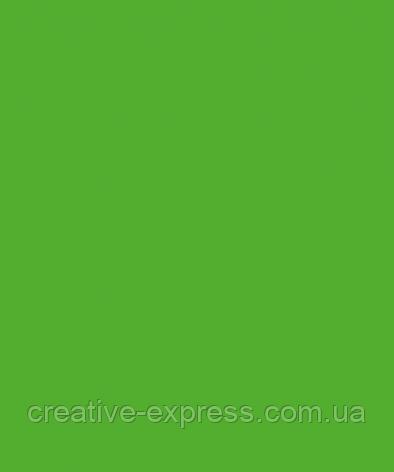 Папір для дизайну Tintedpaper В2 (50*70см), №55 темно-салатовий, 130г/м, без текстури, Folia, фото 2