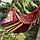 Гамак гавайский подвесной 200x100 см. Туристический Гамак. Тканевый гамак. Гамак для отдыха. Гамак для дачи., фото 2