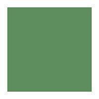 Папір для дизайну Fotokarton B2 (50*70см) №53 Зелений мох 300г/м2, Folia