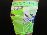 Трусики с машинками для мальчиков, фото 2