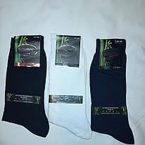 Антибактериальныемужские носки Монтекс высокие