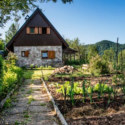 Дача, сад, город