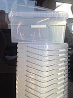 Контейнеры пластиковые пищевые от 200 мл