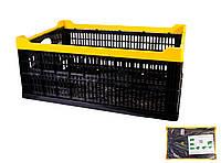 Ящик складаний пластиковий 600х400х240мм чорний MASTERTOOL (79-3950)