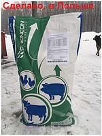 Премикс витаминно минеральный 0,5% для откорма свиней Гроуер Финишер от 40 до 120 кг Шенкон мешок 25 кг
