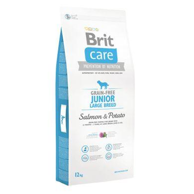 Brit Care (Брит кеа) Grain-free Junior Large Breed Salmon корм для молодых собак крупных пород, 12 кг