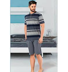 Пижама мужская хлопковая с шортами Seyko костюм для дома 670