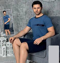 Пижама мужская хлопковая с шортами Seyko костюм для дома 9022 2XL