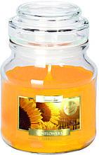 Ароматичні свічки BISPOL соняшник