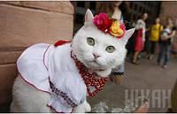 Парад вышиванок 2014 в Украине