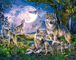 Картина по номерам VP1357 Стая волков, 40x50 см., Babylon