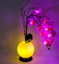 Нічник Орхідеї з LED-підсвічуванням Bing Rong 1502469