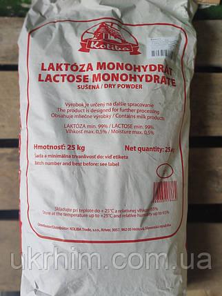 Лактоза Словакия 25 кг., фото 2