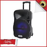 Аккумуляторная колонка чемодан для улицы Ailiang LiGE-AJ15DKS, комбоусилитель, активная колонка с usb входом, фото 2