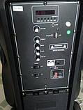 Акумуляторна колонка валізу Ailiang LiGE-AJ15DKS, бездротова 15 дюймова акустика, комбопідсилювач, фото 8