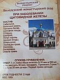 Білоруський монастирський збір при захворюванні щитовидної залози, Натуральні добавки і екстракти, фото 4