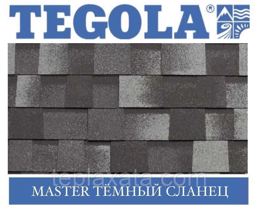 Черепица TEGOLA (Premium) Master Тёмный сланец