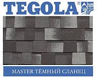 Черепица TEGOLA (Premium) Master Тёмный сланец, фото 1