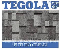 Черепиця TEGOLA (Top-Shingle) Futuro Сірий