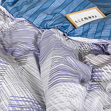 Комплект постільної білизни Сатин Twill 502 ТМ Вилюта, фото 3