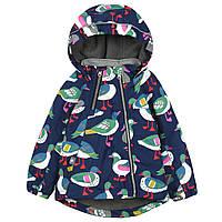 Куртка детская демисезонная Птицы Meanbear (90)