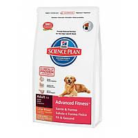 Hills Canine Adult Large Breed Lamb & Rice12кг+2,5кг -корм для собак больших пород с ягненком (2957)