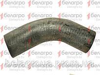 50-1303062-Б2 Патрубок МТЗ радиатора, нижний (Шланг), (У)