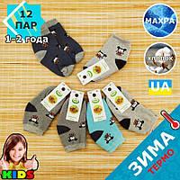 Шкарпетки дитячі махрові середні EKO 12р випадкове асорті 20032319