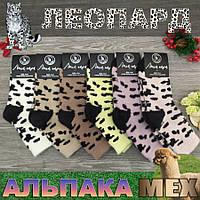 Шкарпетки жіночі шерсть альпаки середні Легка Пара 35-41р плями корови асорті 30024898