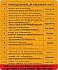 Сумка женская. Кожаная сумочка Мия, Кожа Итальянский краст, цвет Коричневый, оттиск №2, фото 5