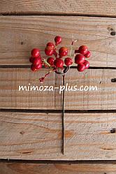Рябина ветка, 20 см