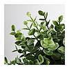 Искусственное растение в горшке IKEA FEJKA 9 см орегано 103.751.59, фото 2