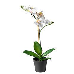 Искусственное растение в горшке IKEA FEJKA Орхидея 002.859.08