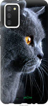 "Чохол на Samsung Galaxy A02s A025F Красивий кіт ""3038u-2203-2448"""