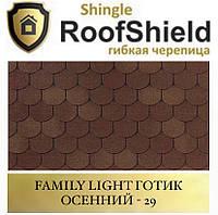 ROOFSHIELD Фемілі Готик 29 Осінній, фото 1