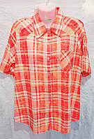 Рубашка женская (48, 54) оптом купить от склада 7 км Одесса