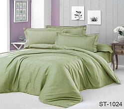 Страйп-сатин двухспальный комплект зеленый ТМ TAG LUXURY ST-1024
