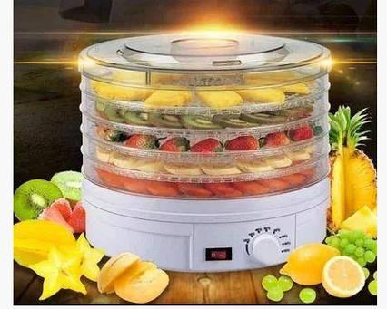 Сушарка електрична для фруктів і овочів Royals Berg TyT